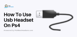 How To Use Usb Headset On Ps4